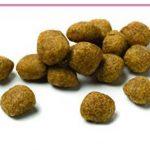 Advance Veterinary Diets Croquettes pour Chien Troubles Urinaires 12 kg de la marque Advance Veterinary Diets image 2 produit