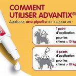 Advantix Très petit chien 1,5 à 4 kg- 6 pipettes antiparasitaires 0,4 ml de la marque Bayer image 1 produit