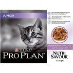 Aliment chaton : faites une affaire TOP 1 image 1 produit