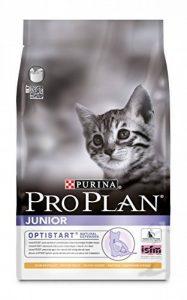Aliment chaton : faites une affaire TOP 4 image 0 produit
