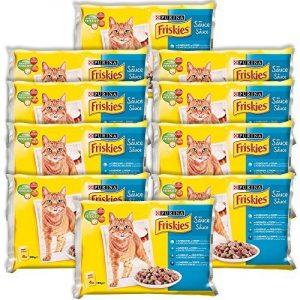 Aliment pour chaton ; faire des affaires TOP 4 image 0 produit