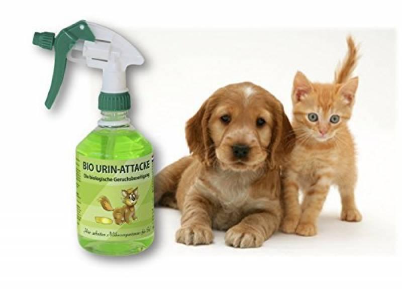 Odeur d urine de chat comment lutter contre luodeur de - Enlever l odeur d urine sur un matelas ...