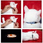 Collier chat clochette ; votre comparatif TOP 0 image 5 produit