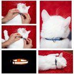 Collier pour chat réfléchissant avec clochette, set de 3 ou 6, solide et sûr, nylon, couleurs mélangées, collier pour animal de compagnie, collier de chat fugueur, par Bemix Pets de la marque Bemix Pets image 5 produit