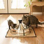 Fontaine à eau pour animaux => trouver les meilleurs modèles TOP 4 image 3 produit