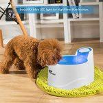 Fontaine d eau pour chien faites une affaire TOP 1 image 5 produit