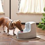 Fontaine d eau pour chien faites une affaire TOP 3 image 2 produit