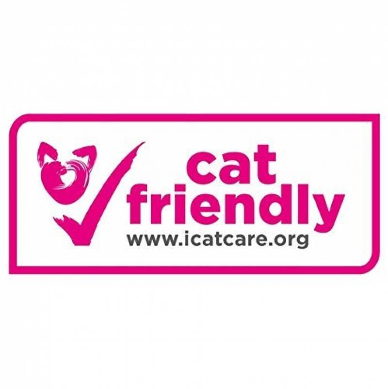 kittyrama collier pour chat