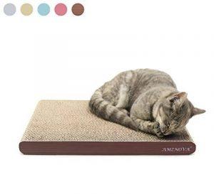 Herbe à chat jouet ; comment trouver les meilleurs modèles TOP 0 image 0 produit