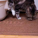 Impressionnante Extra Large tapis de litière pour chat: Best, antidérapant, non toxique, Rentrez et sans poussière Kitty Scatter contrôle System-traps Cristal, Litière agglomérante, pin et autres à partir de Box-soft sur les pattes de chaton sensibles de image 4 produit
