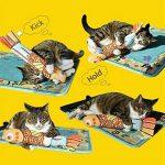Jouet avec herbe à chat : notre top 5 TOP 1 image 4 produit