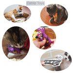 Jouet herbe à chat,MAMACHU 4 Mixte Jouet pour Chat Chaton Jouet SET Catnip Cat Toys avec cataire pour Kitty mâcher morsure,Souris Fromage Oreiller Chat de la marque MAMACHU image 5 produit