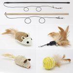 Jouet pour chat canne à pêche => comment trouver les meilleurs modèles TOP 0 image 3 produit