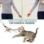 Jouet pour chat canne à pêche => comment trouver les meilleurs modèles TOP 2 image 2 produit