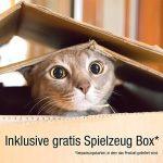 Jouet pour chat plume : trouver les meilleurs produits TOP 0 image 5 produit
