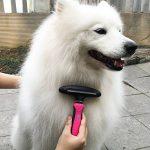 Kit de toilettage 3-en-1 pour chats et chiens TaoTronics , Réduit la perte de poils jusqu'à 90% , étrille + peigne + brosse à effiler de la marque TaoTronics image 4 produit