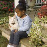 Le comparatif de : Colliers pour chats TOP 4 image 2 produit