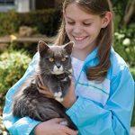 Le comparatif de : Colliers pour chats TOP 4 image 3 produit