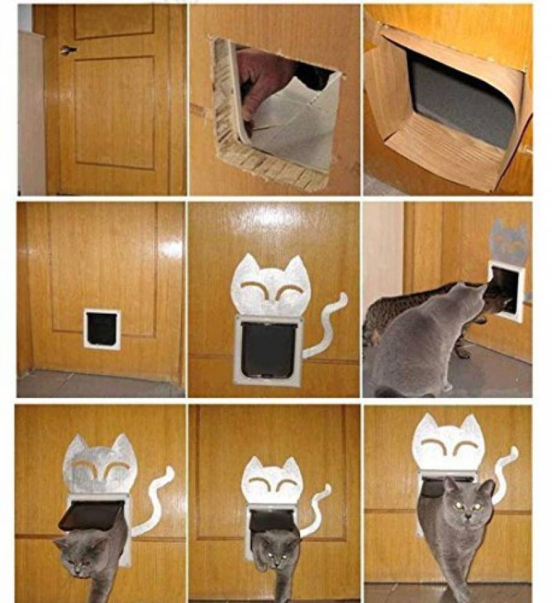 porte d entr e avec chati re pour 2019 comment acheter les meilleurs mod les tout pour mon chat. Black Bedroom Furniture Sets. Home Design Ideas