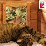 Matatabi chat ; votre comparatif TOP 1 image 3 produit