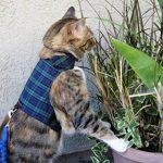 Mynwood Cat Jacket Harnais sécuritaire pour chat adulte Noir Tartan de la marque Mynwood Cat Jacket image 1 produit