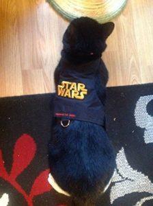 mynwood Harnais pour chat/chaton Star Wars jusqu'à 8mois–Escape imperméable de la marque Mynwood Cat Jacket image 0 produit