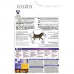 Nourriture chaton 3 mois comment choisir les meilleurs en france TOP 0 image 2 produit