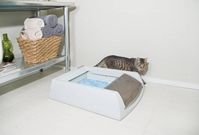 maison de toilette pour chat sans odeur pour 2019 notre. Black Bedroom Furniture Sets. Home Design Ideas