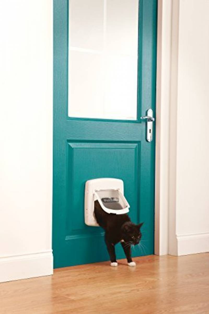 Extension de Tunnel Incluse Chati/ère De Luxe Staywell pour Chat avec Syst/ème de Verrouillage /à 4 Positions Blanc PetSafe