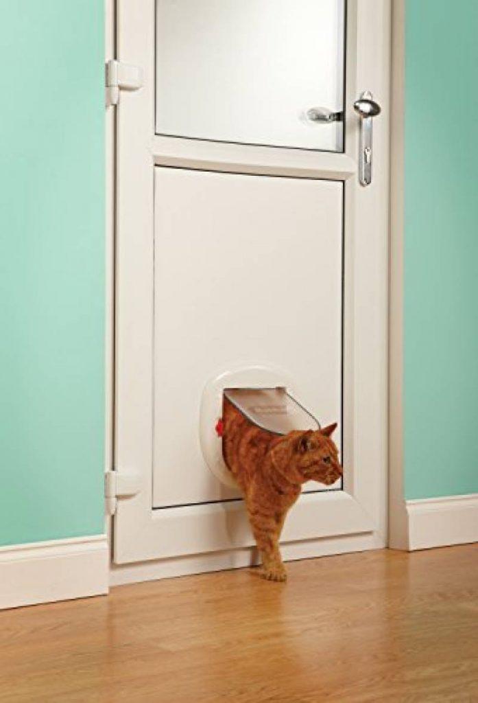 Porte Chat Trouver Les Meilleurs Modèles Pour Tout Pour Mon - Porte pour chien