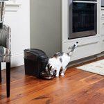 PetSafe - Distributeur Automatique de Croquettes pour Animaux 5.6L, Programmable jusqu'à 12 Repas/Jour, Facile à Utiliser avec Ecran LCD, Facile à Nettoyer, Contrôle des Portion, pour Chien, Chat de la marque PetSafe image 5 produit