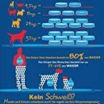 PetSafe - Fontaine à eau pour animaux 360° Drinkwell en Acier Inoxydable Capacité 3.8L, 5 Jets d'eau Cascade, Idéal pour Plusieurs Chiens et Chats de la marque PetSafe image 5 produit
