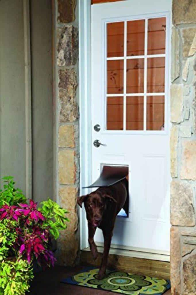 trappe pour chien grande taille faites une affaire pour. Black Bedroom Furniture Sets. Home Design Ideas