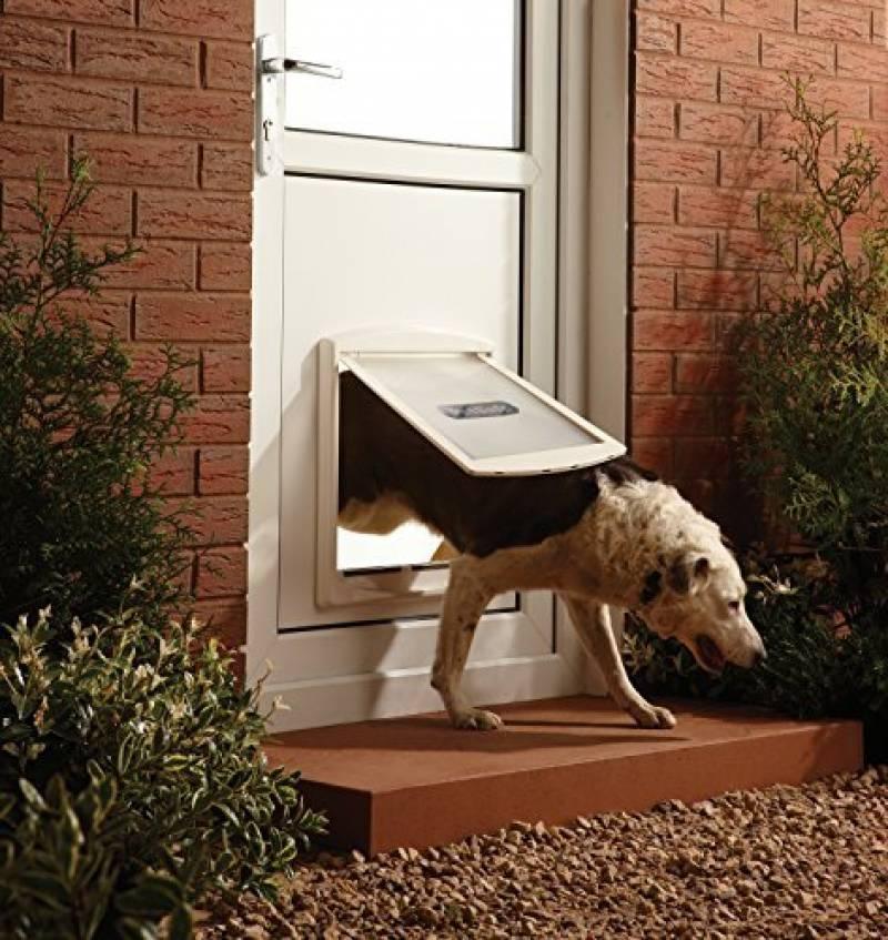 Trappe Pour Chien Votre Comparatif Pour Tout Pour Mon Chat - Porte pour chien