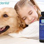 Pro Pet Poudre probiotique pour chiens et chats avec 17 souches bactériennes bénéfiques; Aide à la santé digestive, au système immunitaire, à la santé bucco-dentaire - Fournit 73 milliards de «bonnes» bactéries par portion. 30 portions de la marque Pet De image 4 produit