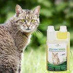 Produit Nettoyant et Eliminateur d'odeur Bio pour Chats Ecosharkz Animal - Spray désodorisant anti urine pour intérieurs avec chat et litière - Concentré de 500ml - jusqu'à 25L de solution nettoyante de la marque Ecosharkz image 6 produit