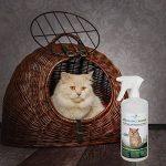 Produit Nettoyant et Eliminateur d'odeur Bio pour Chats Ecosharkz Animal - Spray désodorisant anti urine pour intérieurs avec chat et litière - Concentré de 50ml - jusqu'à 2L de solution nettoyante de la marque Ecosharkz image 5 produit