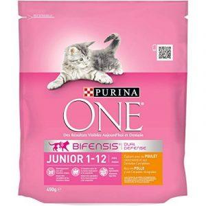 Purina One Junior de 1 à 12 mois Au Poulet et aux Céréales Complètes 450 g - Croquettes pour Chaton - Lot de 10 de la marque Purina One image 0 produit