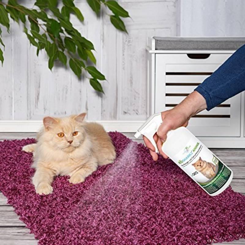 urine chat votre comparatif pour 2018 tout pour mon chat. Black Bedroom Furniture Sets. Home Design Ideas