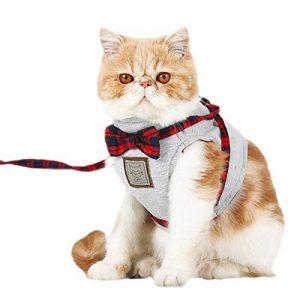 Votre meilleur comparatif : Harnais pour chat avis TOP 0 image 0 produit