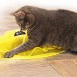 Votre meilleur comparatif : Souris interactive pour chat TOP 1 image 2 produit